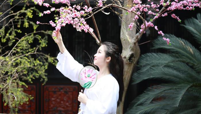 Akutagava Rjúnoszuke: Déli szépségek