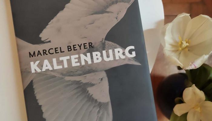 Madártávlatból emlékezni (Marcel Beyer: Kaltenburg)